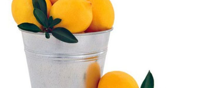 Aberdeen woman: When you're handed lemons, make a bucket list